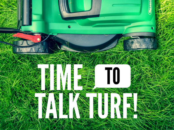 Time to talk turf picture