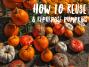 Don't toss those Pumpkins justYet!
